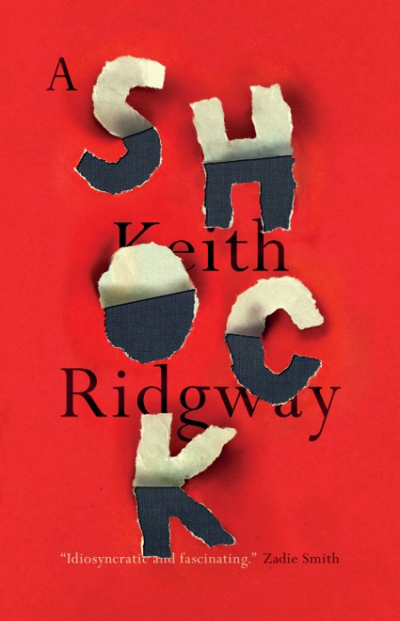 A Shock by Keith Ridgway
