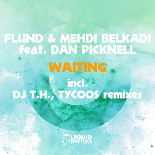 Flund & Mehdi Belkadi feat. Dan Picknell — Waiting (2021)
