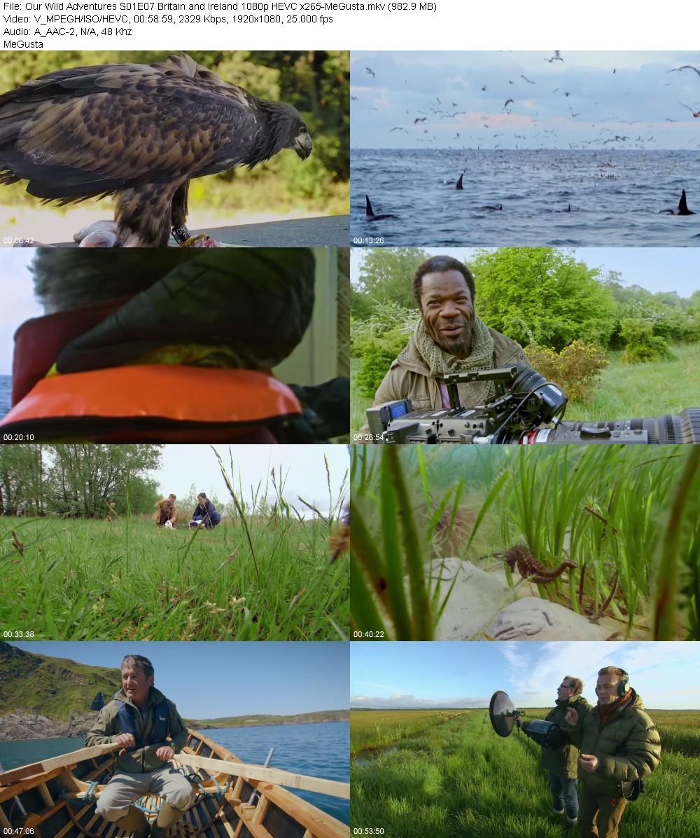 220190928_our-wild-adventures-s01e07-britain-and-ireland-1080p-hevc-x265-megusta.jpg