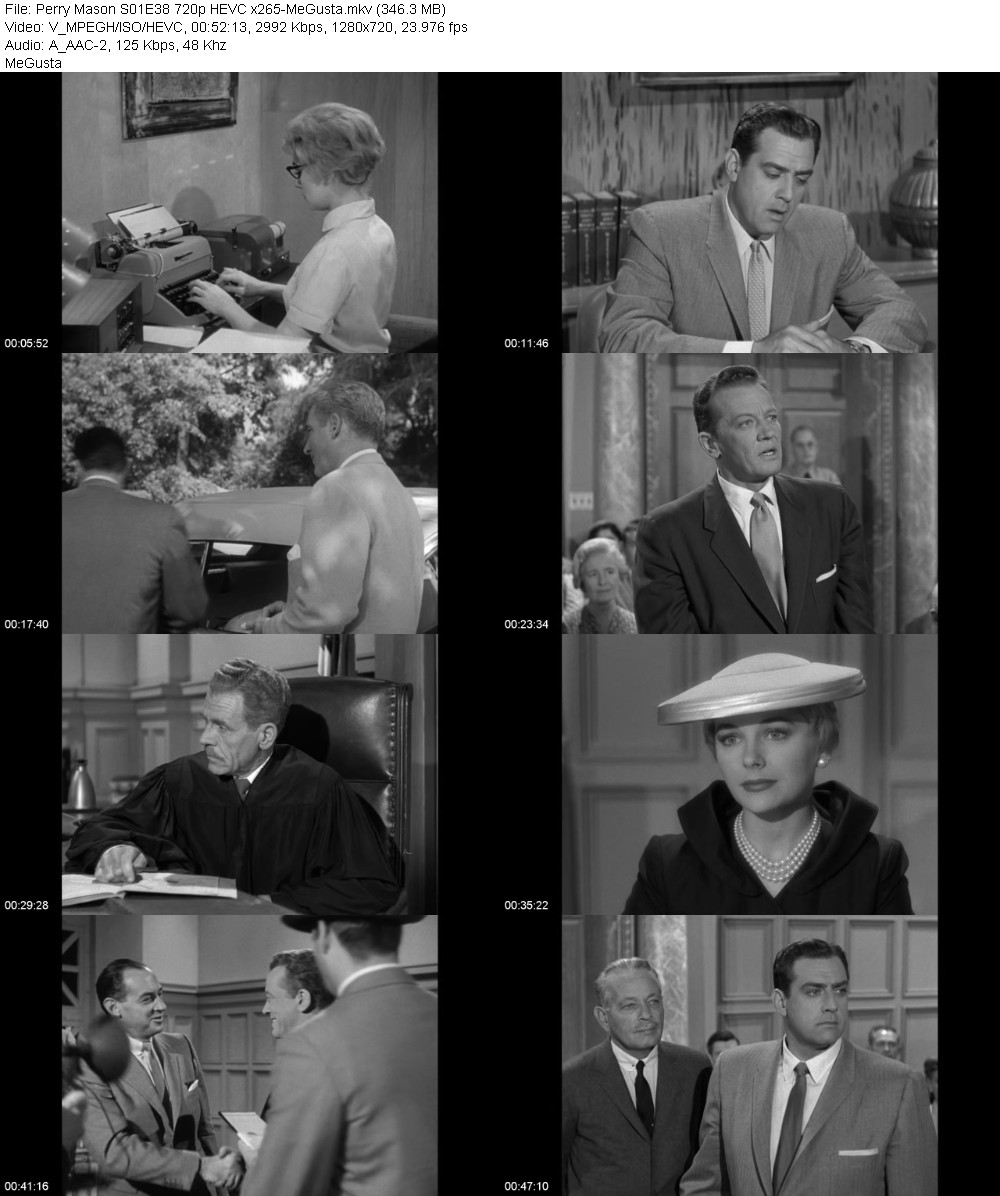 Perry Mason S01E38 720p HEVC x265-MeGusta